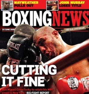 boxing new