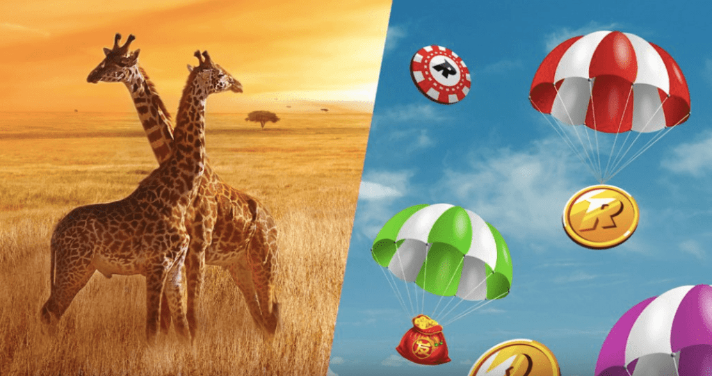 safari promotion by Rizk - to left Giraffes, to right landing Rizk wins