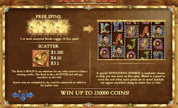 Book of dead showing Free Spins